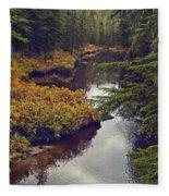 Upper Salamander Creek Fleece Blanket
