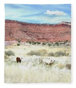 Utah 7 Fleece Blanket