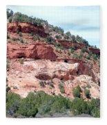 Utah 9 Fleece Blanket