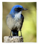 Utah Bird Fleece Blanket
