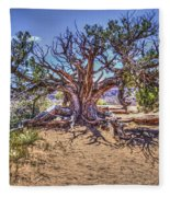 Utah Juniper On The Climb To Delicate Arch Arches National Park Fleece Blanket