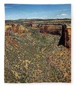 Ute Canyon Panorama Fleece Blanket