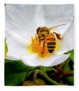 Vacaville Honey Bee Fleece Blanket