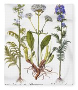 Valerian Flowers, 1613 Fleece Blanket