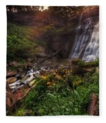 Valley Of Golden Light Fleece Blanket