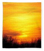 Valley Of The Sun Fleece Blanket