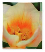 Variations Of Orange Fleece Blanket