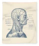Vascular And Muscular System - Vintage Anatomy Print Fleece Blanket