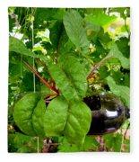 Vegetable Growing In Used Water Bottle 10 Fleece Blanket