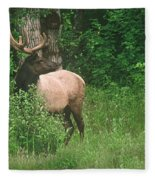 Velvet Never Looked So Good Fleece Blanket
