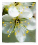 Vermont Apple Blossom Fleece Blanket