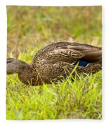 Vermont Mallard Portrait Fleece Blanket