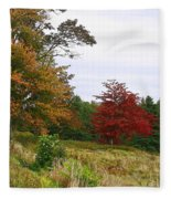Vermont Roadside Color Fleece Blanket