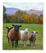 Vermont Sheep In Autumn Fleece Blanket