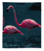 Very Pink Flamingos Fleece Blanket