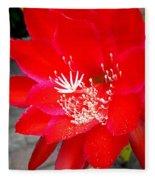 Vibrant Cacti Fleece Blanket
