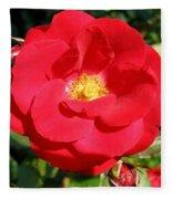 Vibrant Red Rose Fleece Blanket
