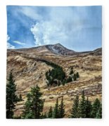 View From Guanella Pass Road Fleece Blanket