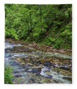 View In Vintgar Gorge - Slovenia Fleece Blanket