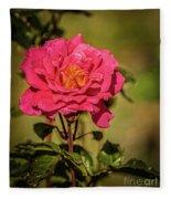 Vignetted  Rose Fleece Blanket