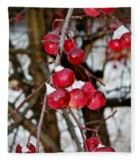 Vignettes - Snow Fruit Fleece Blanket