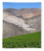 Vineyards In The Atacama Desert Chile Fleece Blanket