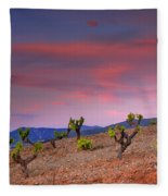 Vineyards At Sunset In Spain Fleece Blanket