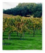 Vineyards In California Fleece Blanket