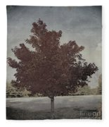Vintage Autumn Moment Fleece Blanket