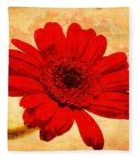Vintage Gerbera Daisy Fleece Blanket