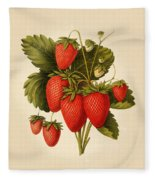 Vintage Strawberries Fleece Blanket