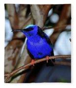 Vivid Blue Fleece Blanket