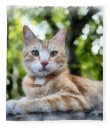 Volterra Italy Cat Watercolor Fleece Blanket