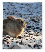 Wabbit Fleece Blanket