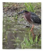 Wading Green Heron Fleece Blanket