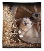 Wagon Wheel Kitty. Fleece Blanket