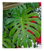 Waikiki Split Leaf Fleece Blanket