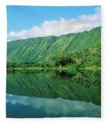 Waipio Valley Stream Fleece Blanket