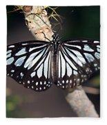 Waiting --- Rice Paper Butterfly Fleece Blanket