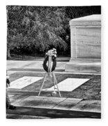 Walking His Post Fleece Blanket