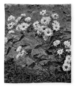 Wallflower Ain't So Bad Bw Fleece Blanket