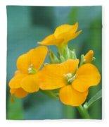 Wallflower Orange Fleece Blanket