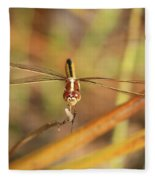 Wandering Glider Dragonfly Fleece Blanket