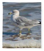 Warm Water Wading Fleece Blanket