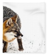 Wary Red Fox Fleece Blanket