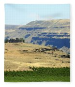 Washington Stonehenge With Vineyard Fleece Blanket