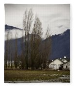 Washington Winter Day Fleece Blanket