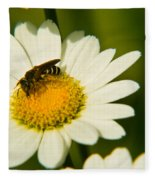 Wasp On Daisy Fleece Blanket