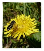 Wasp Visiting Dandelion Fleece Blanket