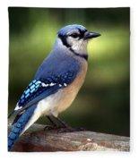 Watchful Blue Jay Fleece Blanket